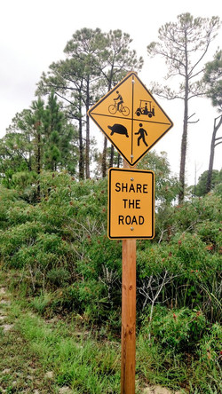 Share the road :)