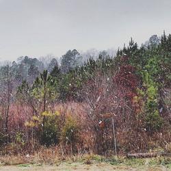Let it snow, let it snow, let it snow _D Mississippi schnowwww