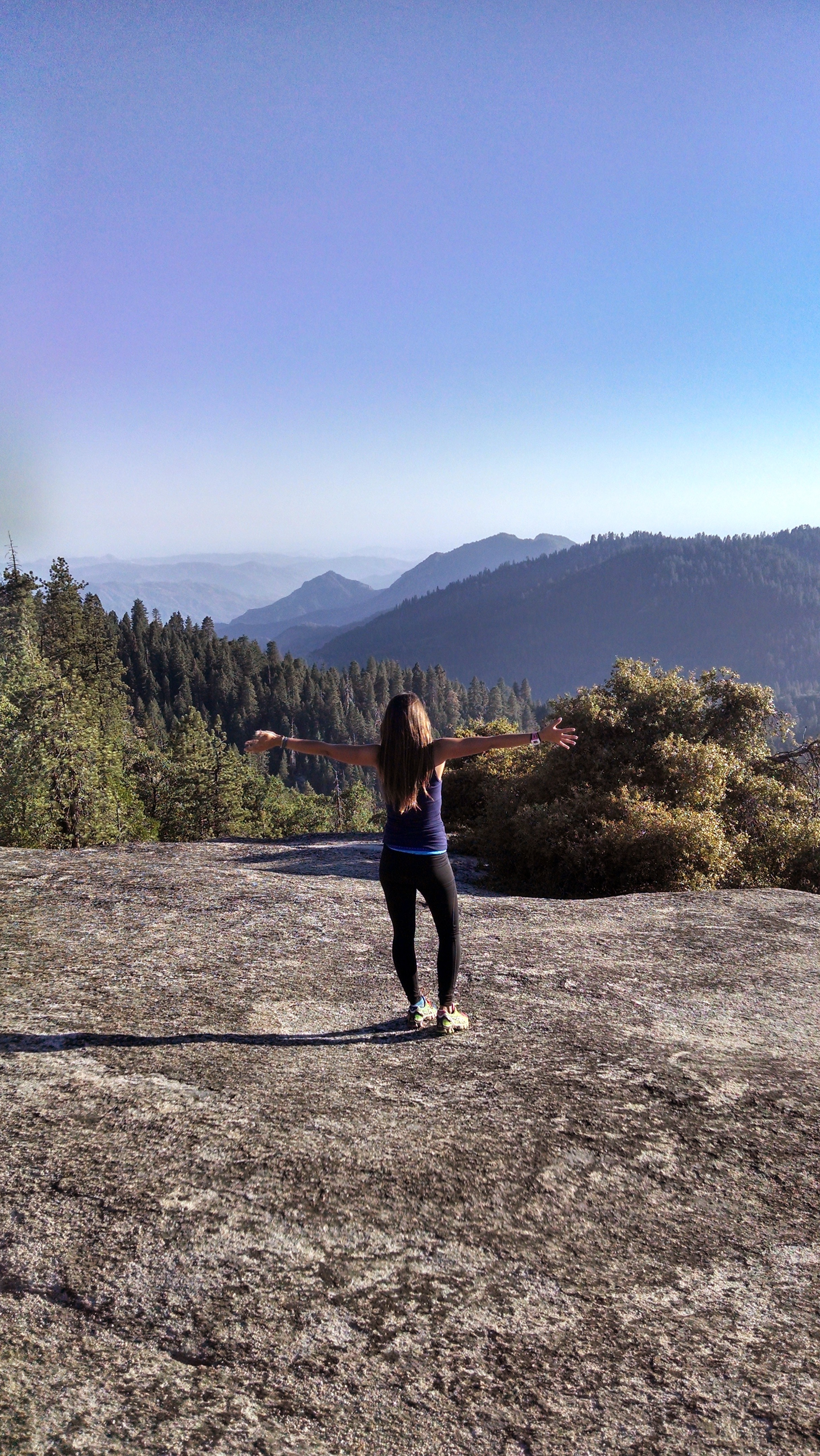 The Great Sequoias