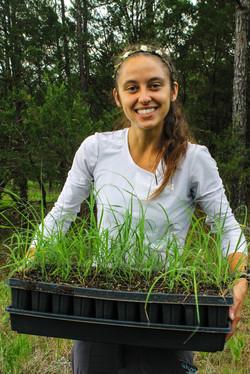 100 grasses planted!