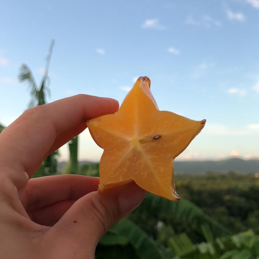 A local starfruit