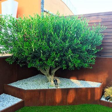 Diseño de jardín en Torrelodones