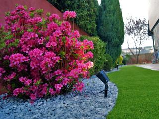 Jardín en Alpedrete