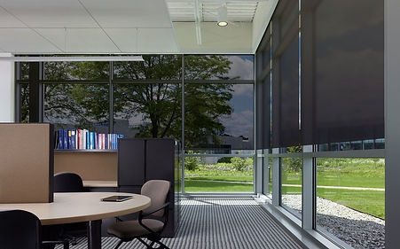 elevate-your-workspace-with-lutron-light