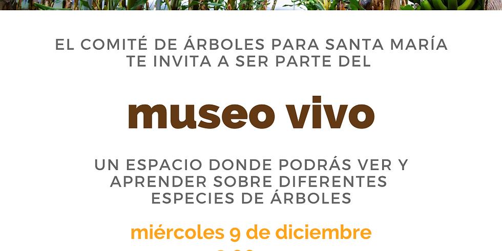 Museo Vivo: Inauguración