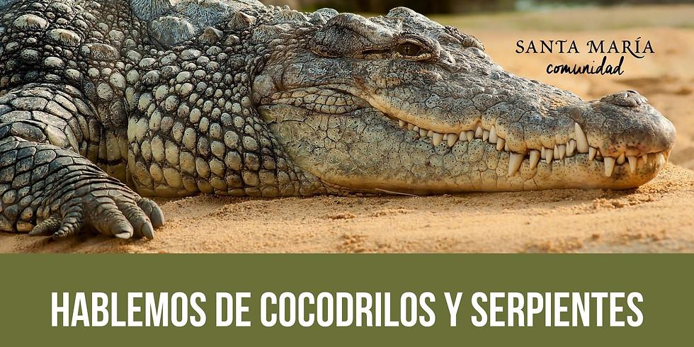 Hablemos de Cocodrilos y Serpientes