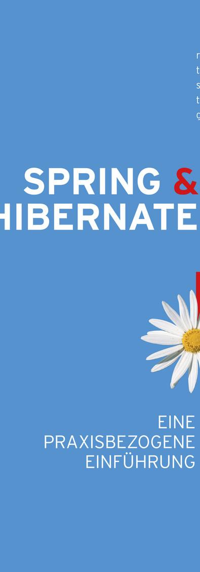 Hanser Verlag / Robert Oates - Spring & Hibernate
