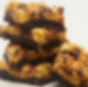 Chip Magnet Total Cluster Fudge Brownie