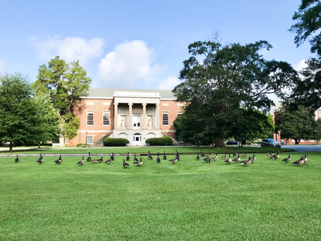 "Wesleyan College featured in the ""The Princeton Review's Guide to 399 Green Colleges: 2018"