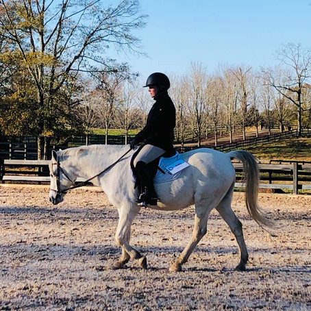 Wesleyan equestrians place in IHSA inaugural online horse show