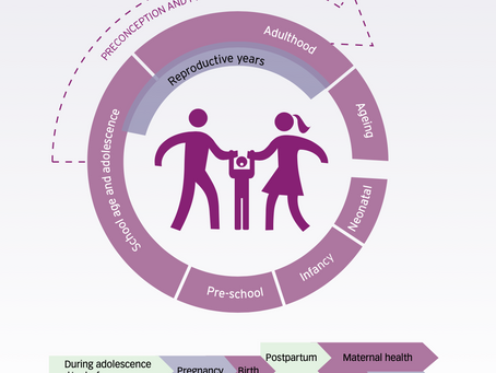 Preconception care : Maximizing the gains for maternal and child health