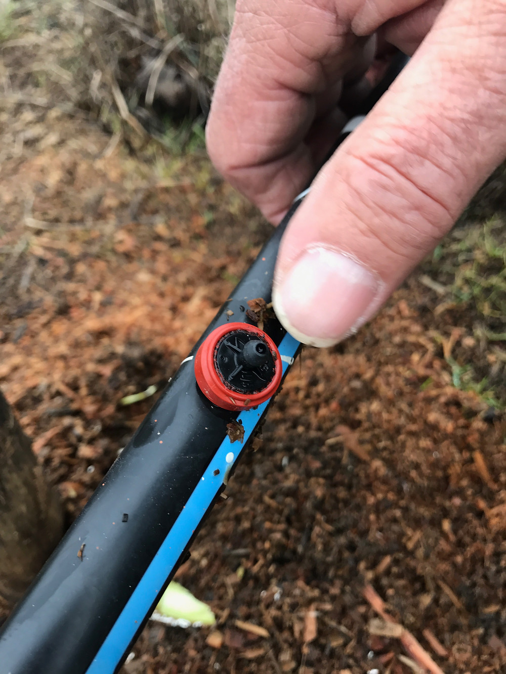 Pic of drip line.