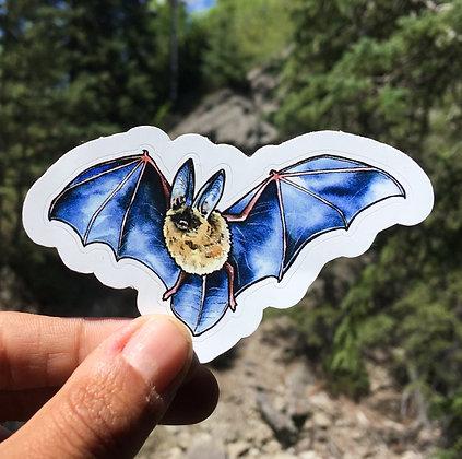 Long-Eared Bat Sticker