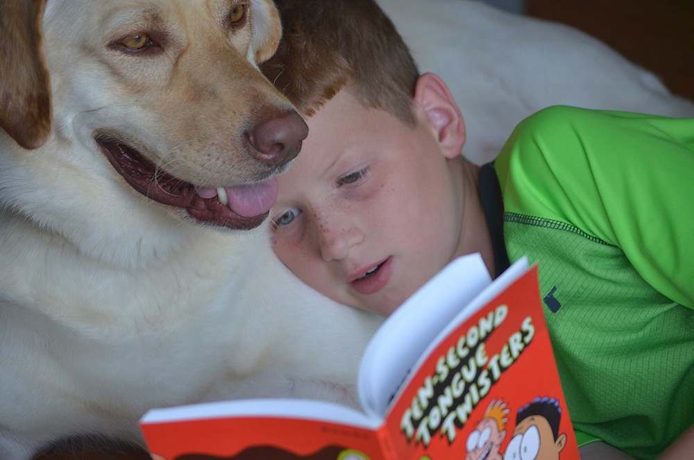Boy reading to his dog