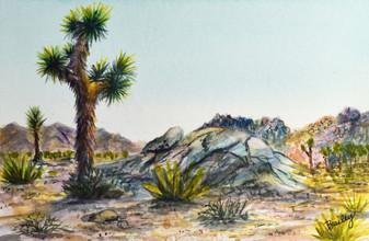 "Joshua Tree, California  4""x6"" Plein Air Adventure Collection Original Watercolor SOLD"