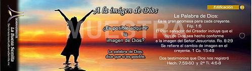 51 A la imagen de Dios
