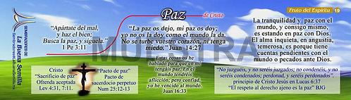 19 Paz