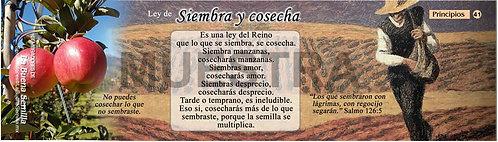 41 Ley de Siembra y Coseha