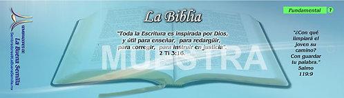 7 La Biblia
