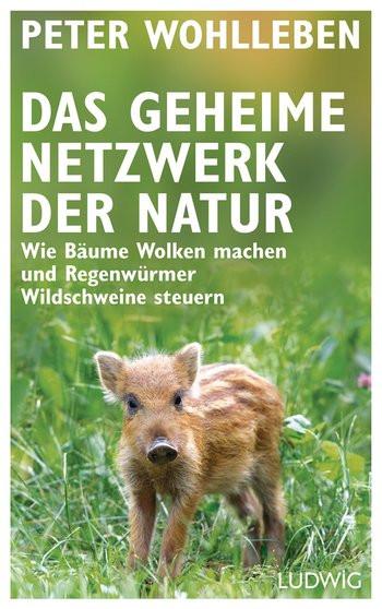 Peter Wohlleben das geheime Netzwerk der Natur Bäume Zusammenhänge Ökosystem Wildschweine Frischling Buch Rezension Bewertung Meinung