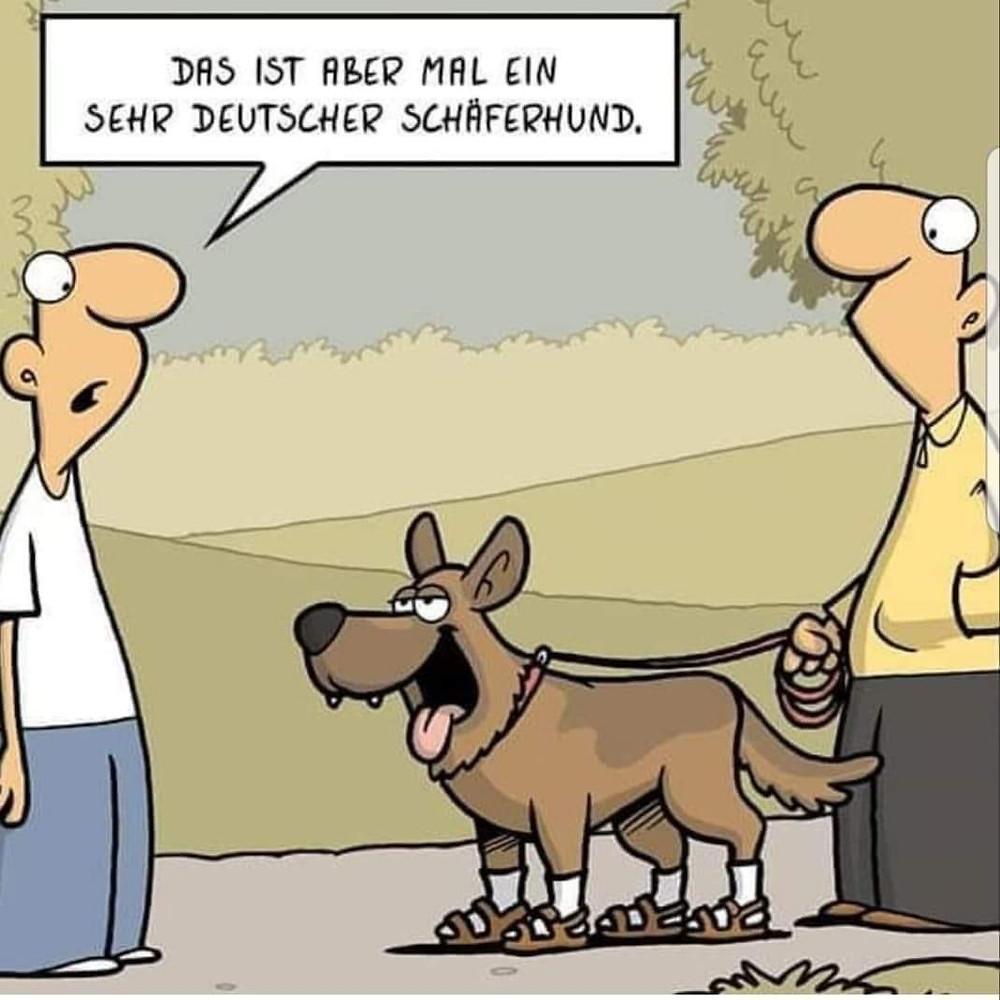 #Angst #Furcht #Hunde #Hundeerziehung Psychologie