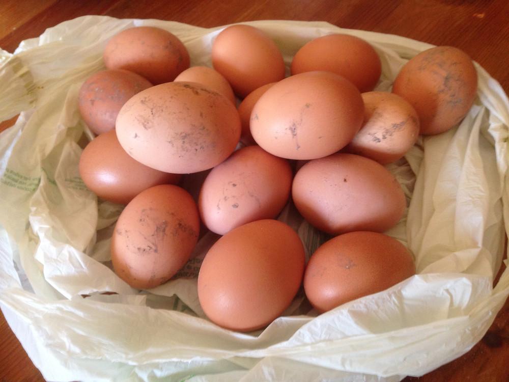Ostereier Eier Fruchtbarkeitssymbol Ostern Fruchtbarkeitsgöttin Ostara Bedeutung Fülle