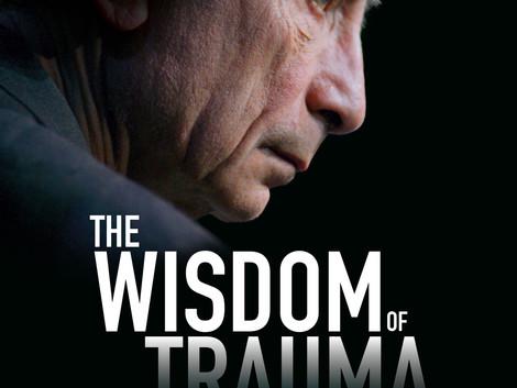 Weisheit des Traumas