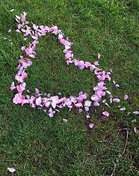 heart-petals.jpg