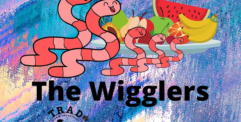 The Wigglers - Children's Books