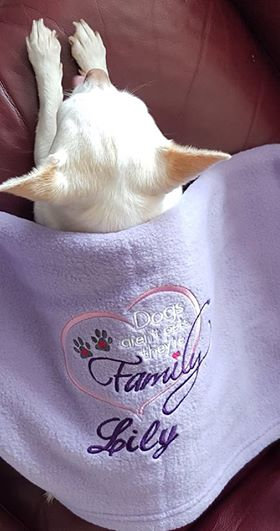 Dogs are Family Blanket