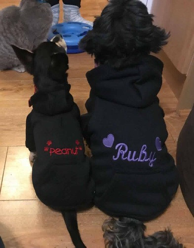 Embroidered Dog Hoddies