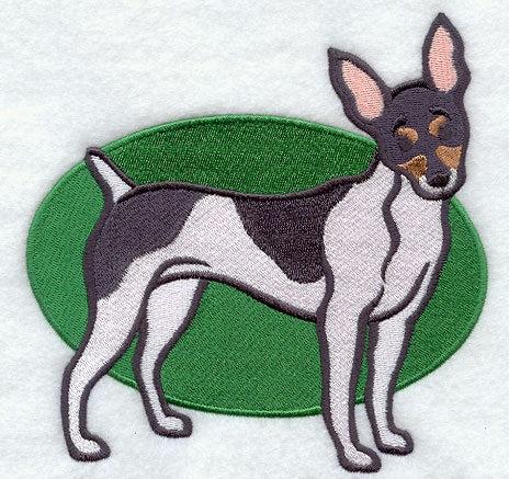 Toy Fox Terrier