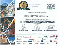 AMPI CONGRESO 2016 (Puebla).jpg