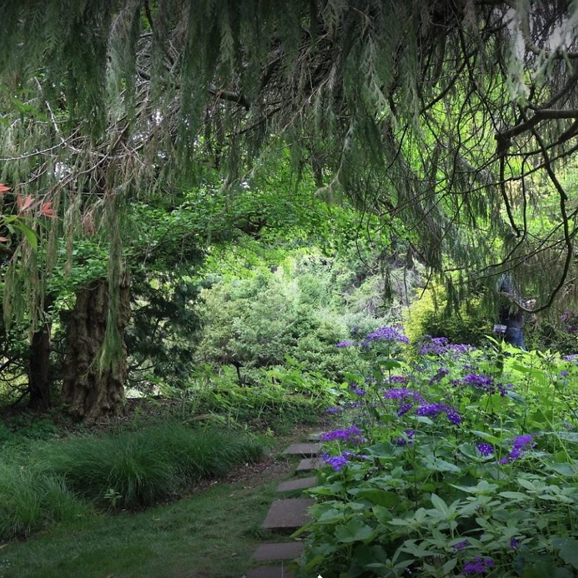 Flower Piano Yoga at Golden Gate Botanical Gardens (free)
