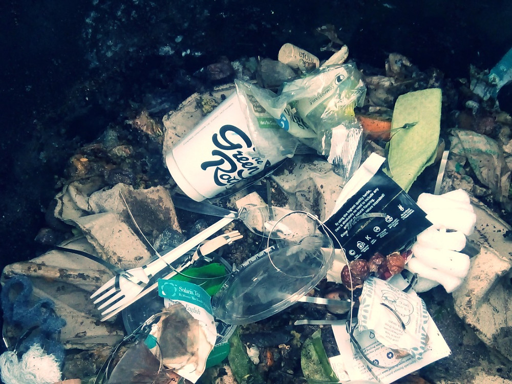 Bioplastic Waste in the Home Compost Bin