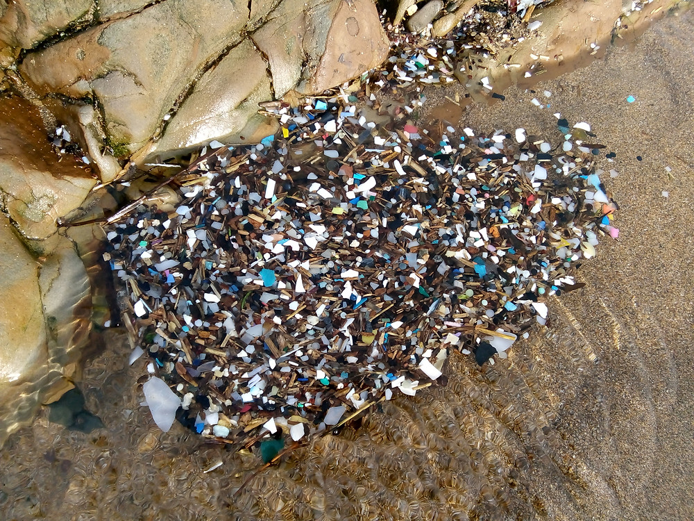 Micro-plastic Pollution from Storm Eleanor