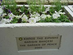 IPG Cyprus Dedication