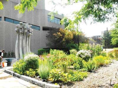 nf-public-library-garden