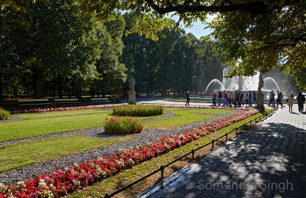 IPG Saski Park, Warsaw