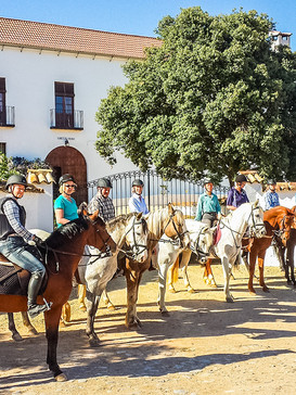Hacienda-Horse-Riding-Holidays-Spain-Hac