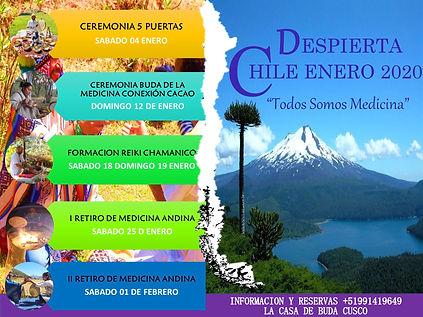 CREMONIAS CHILE 2020.jpg