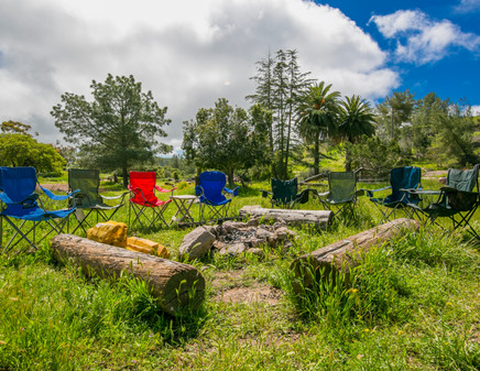 Black Jack Campground Spring