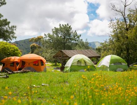 Comfort Camper