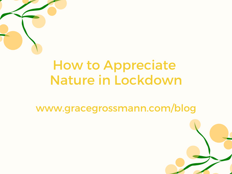 How to Appreciate Nature in Lockdown