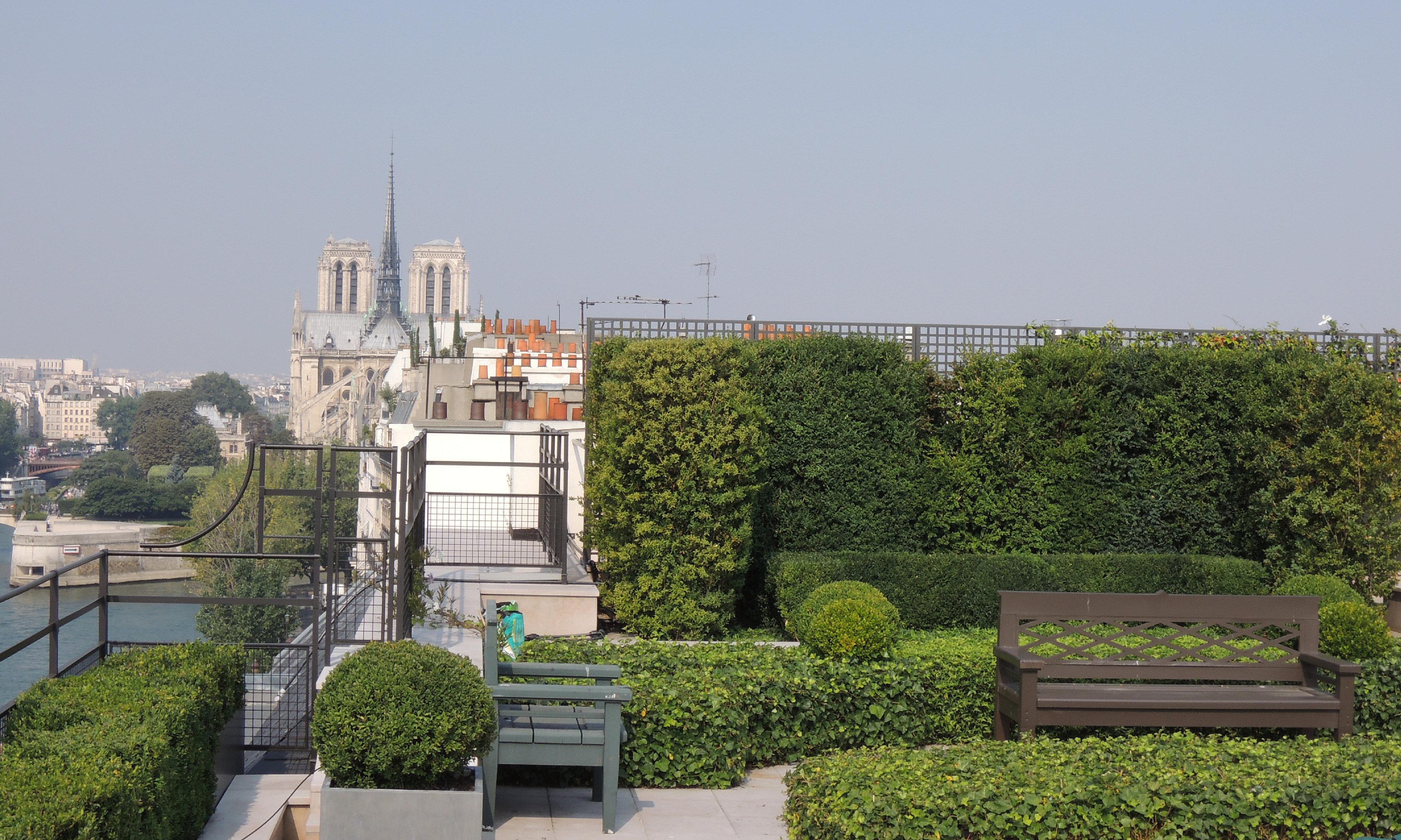 paysagiste jardinier cour jardin terrasse paris