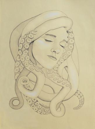 Cephalopod Medusa