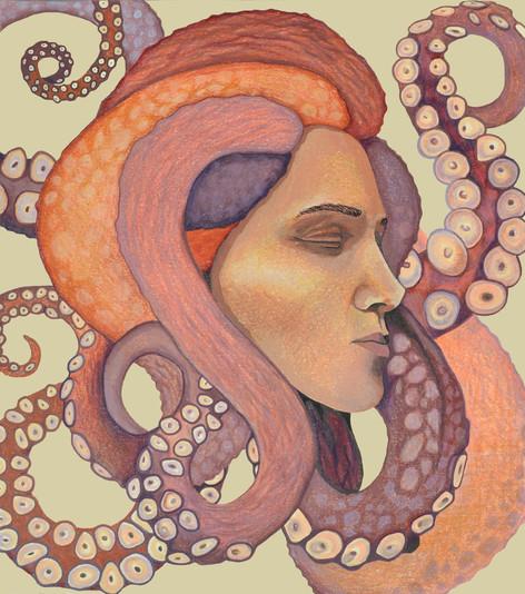 Medusae Polypus