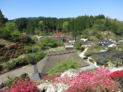 Spring in Koishiwara pottery village
