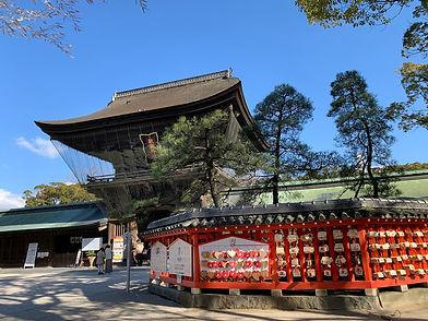shrine japan architecture fukuoka pine tree