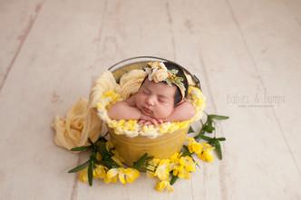 Baby girl in bucket pose with yellow flowers and yellow bucket.jpg